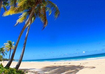 caribbean-luxury-rentals-ocean-villa-1-puerto-rico-rio-mar-12