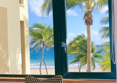 caribbean-luxury-rentals-ocean-villa-1-puerto-rico-rio-mar-20