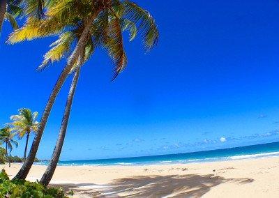 caribbean-luxury-rentals-ocean-villa-puerto-rico-rio-mar-4