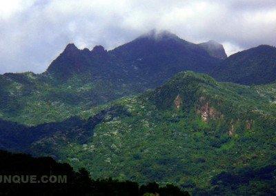 caribbean-luxury-rentals-villas-concierge-service-puerto-rico-rio-mar-images-7