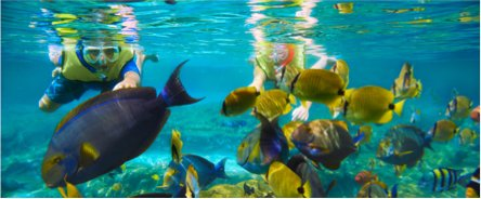 boat-catamaran-private-charter-puerto-rico-vacation-caribbean-luxury-rentals-ocean-front-beach-villa-condos-5